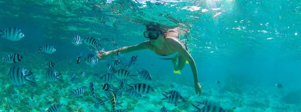 cabo adventures snorkeling cabo pulmo 01
