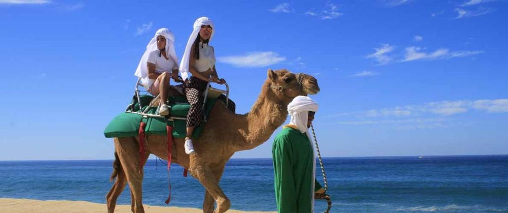 cactus camel ride 01