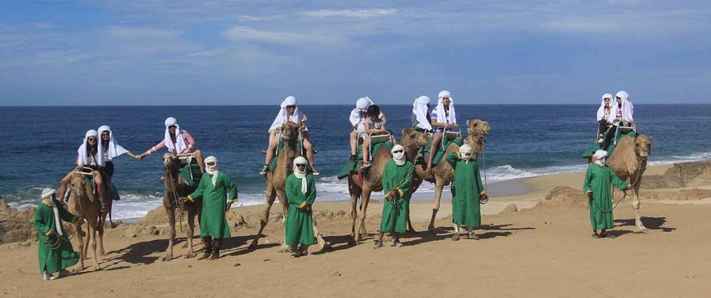 cactus camel ride 02