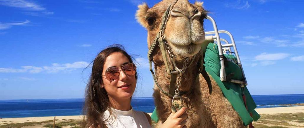 cactus camel ride 03