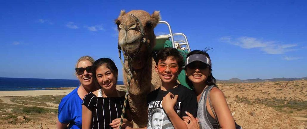 cactus camel ride 04