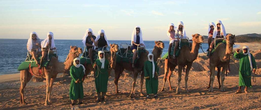 cactus camel ride 10