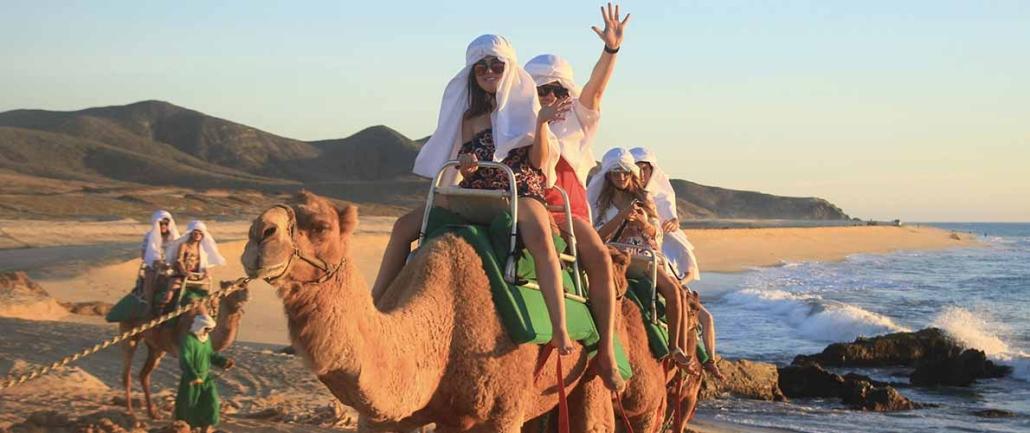 cactus camel ride 12