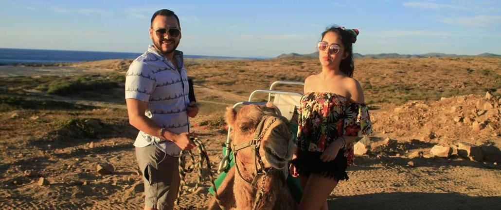 cactus camel ride 16
