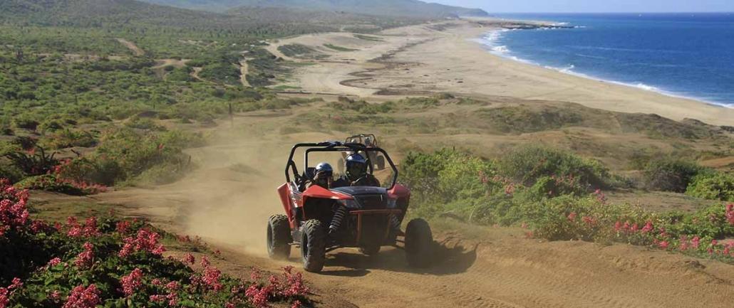 cactus sport adventure 13